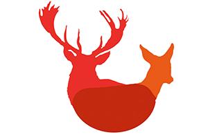 Stag& Deer